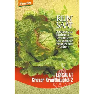 BIO Eissalat Grazer Krauthäuptel 2